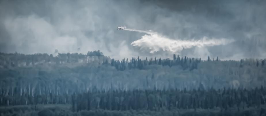 Wildfire - Hutch Lake, Alberta, Canada - 16