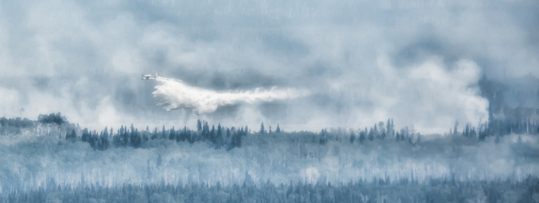 Wildfire - Hutch Lake, Alberta, Canada - 17