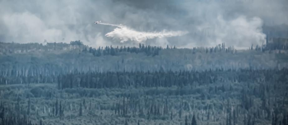 Wildfire - Hutch Lake, Alberta, Canada - 4