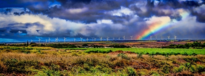 Wind Turbines and Rainbow - Oahu 1