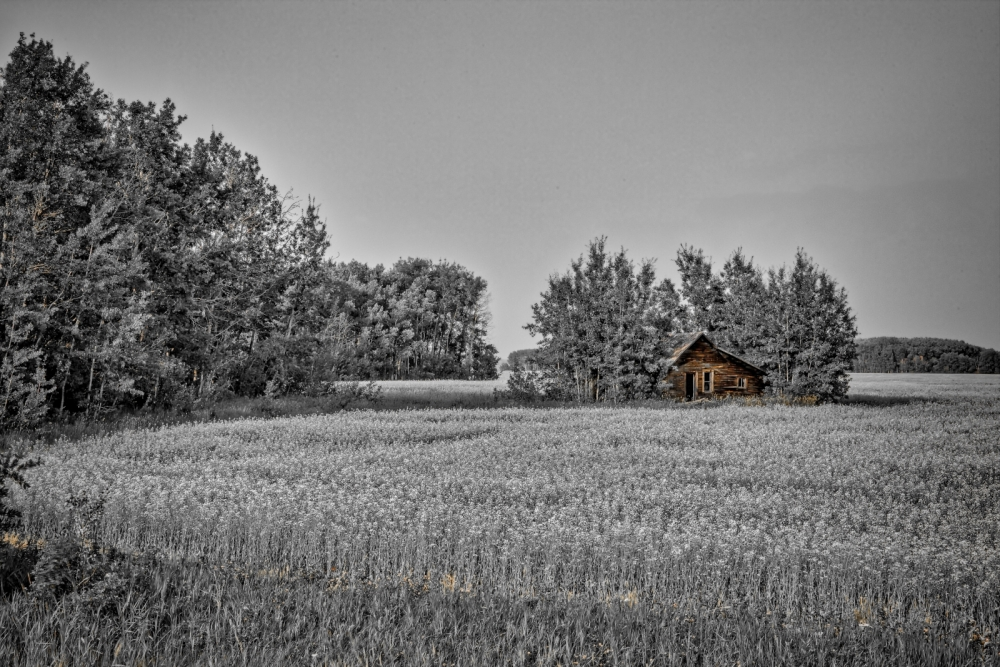 Fairview Homestead HDR ii-Edit-Edit-Edit-2