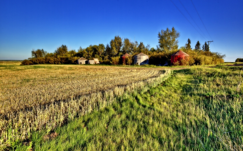 Grain Bins - Stettler, Alberta