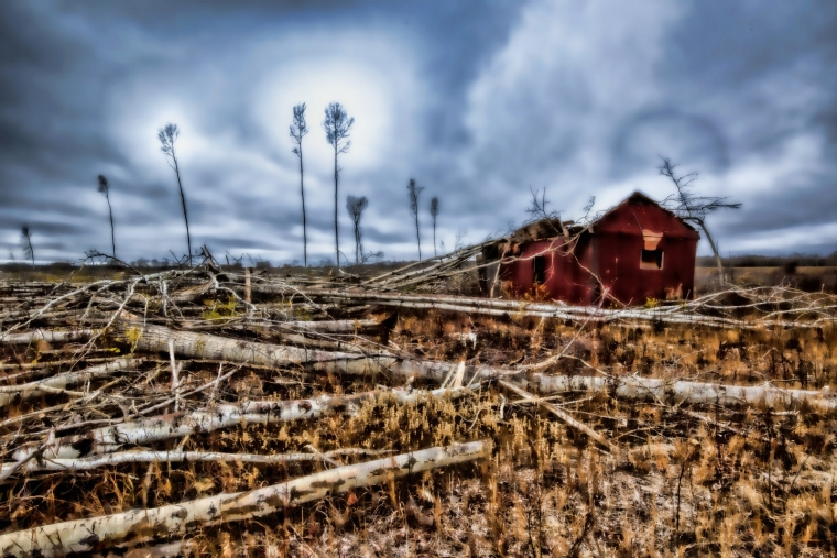 Strewn Timber - Rocky Lane, Alberta - Canada ii