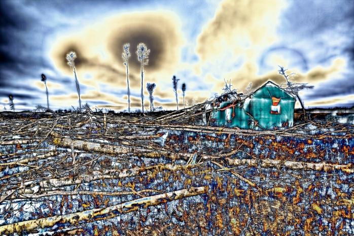 Strewn Timber - Rocky Lane, Alberta - Canada iii