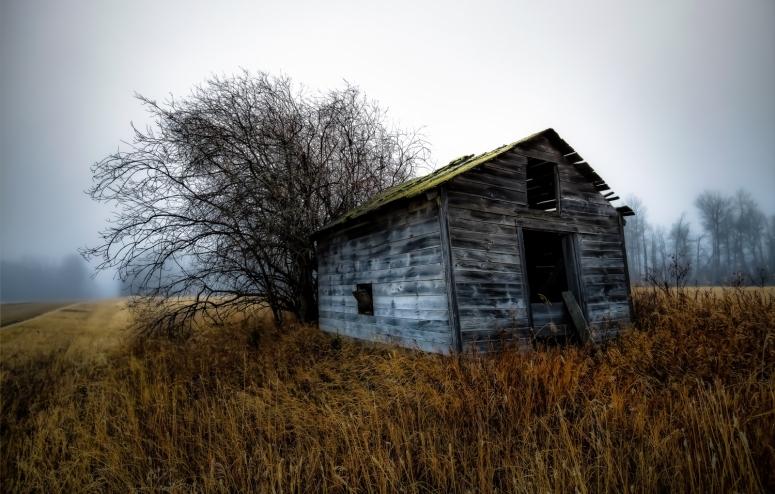 Foggy Granary - Dixonville, Ab - Canada i