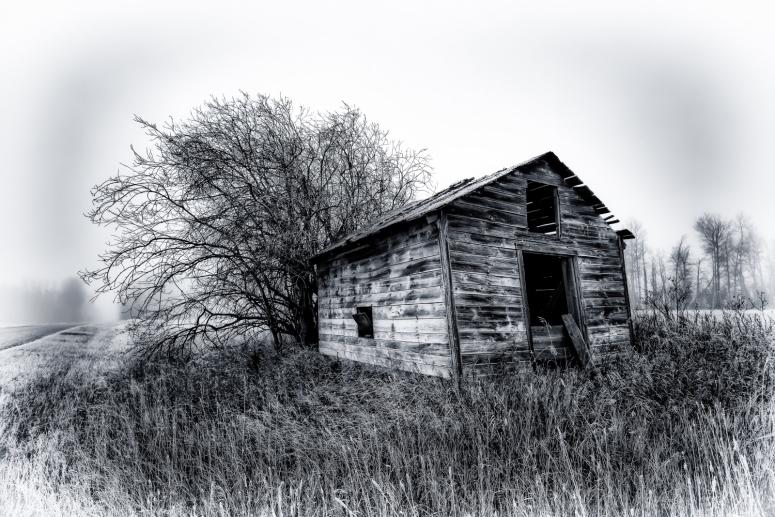 Foggy Granary - Dixonville, Ab - Canada ii