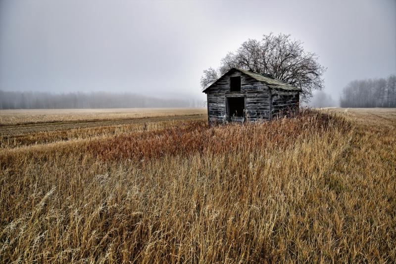 Foggy Granary - Dixonville, Ab - Canada iii