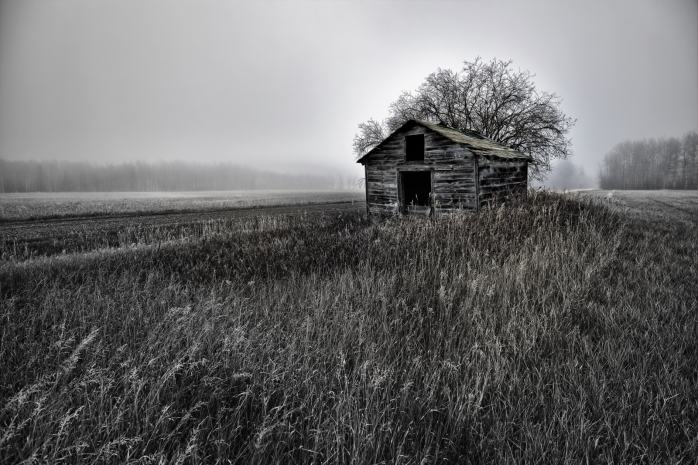 Foggy Granary - Dixonville, Ab - Canada iv