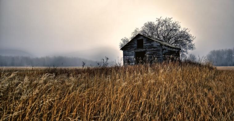 Granary in Fog - Dixonville, Ab - Canada i
