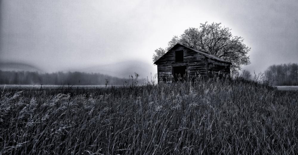Granary in Fog - Dixonville, Ab - Canada ii