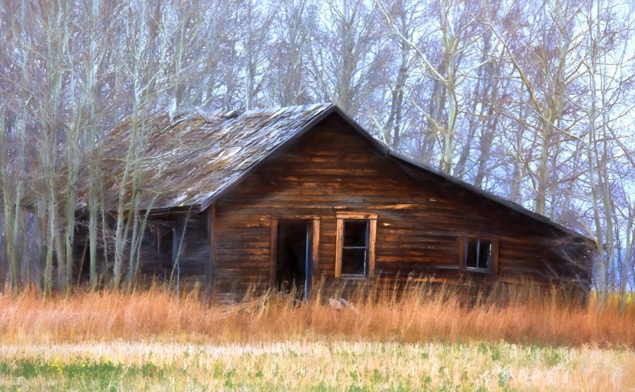Homestead in Fall - Fairview, Alberta - Canada 1
