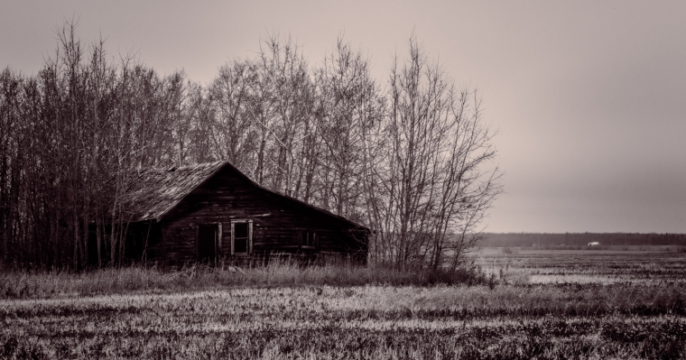 Homestead in Fall - Fairview, Alberta - Canada 2