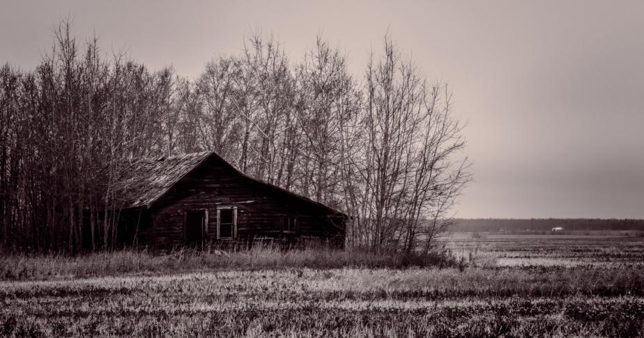 Homestead in Fall - Fairview, Alberta - Canada 2