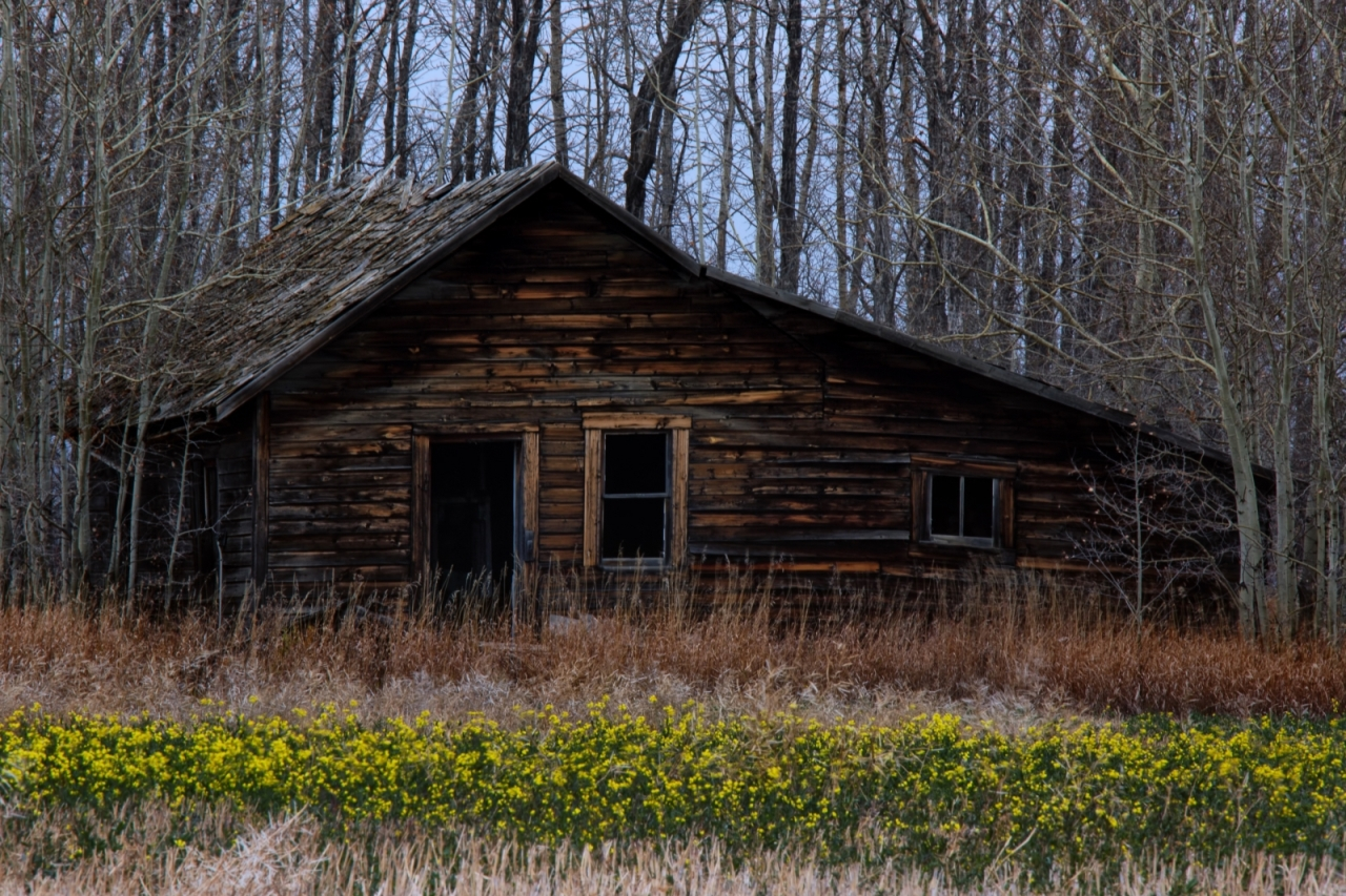Homestead in Late Fall - Fairview, Ab i