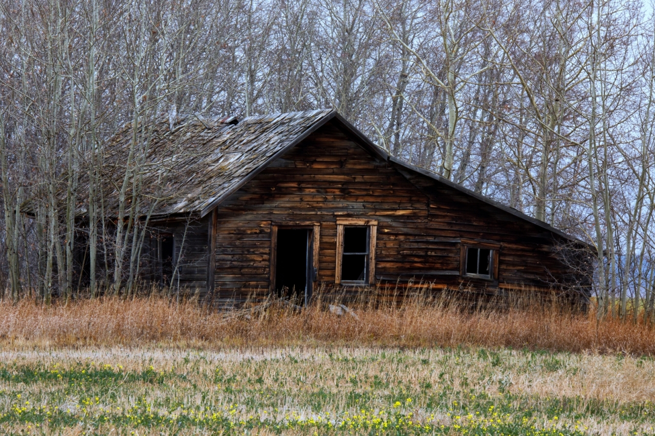 Homestead in Late Fall - Fairview, Ab ii
