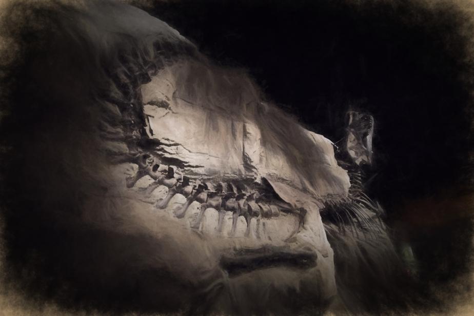 Dinosaur - Drumheller, Ab - Canada 3