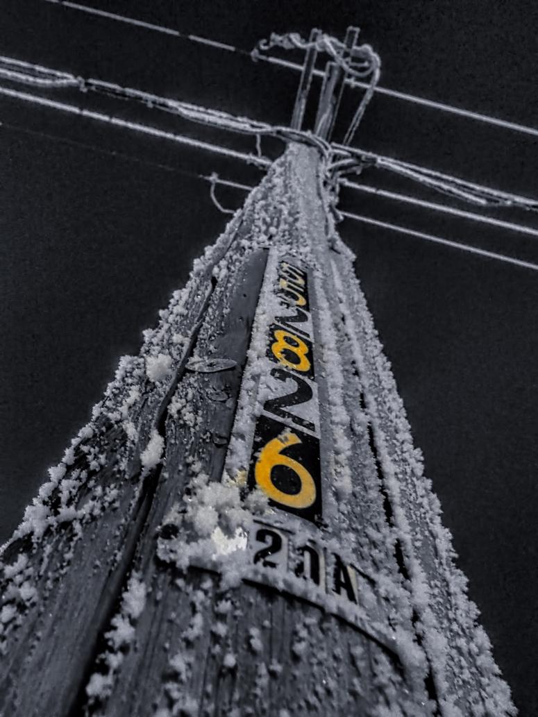 Hoar Frost - High Level, Ab - Canada 5
