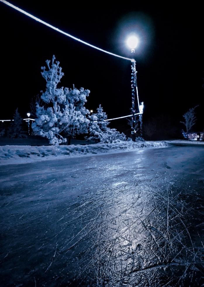 Hoar Frost Morning - High Level, Ab - Canada 13b