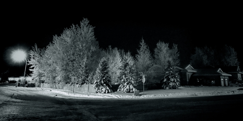 Hoar Frost Morning - High Level, Ab - Canada 2a