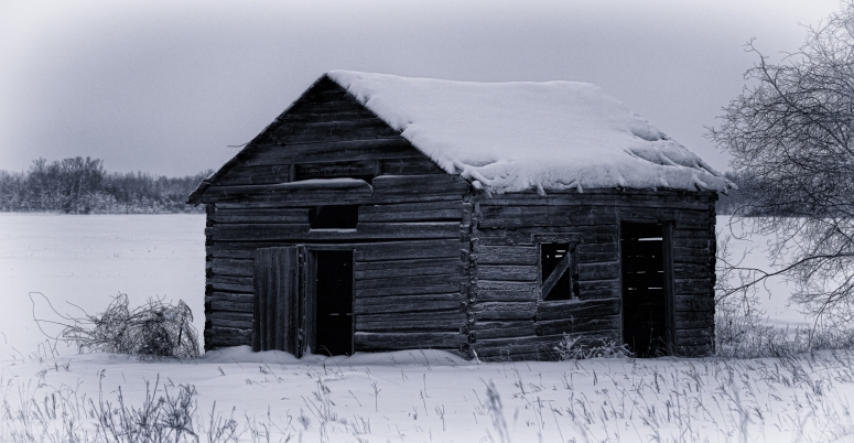 Shed - Buttertown, Ab - Canada 2