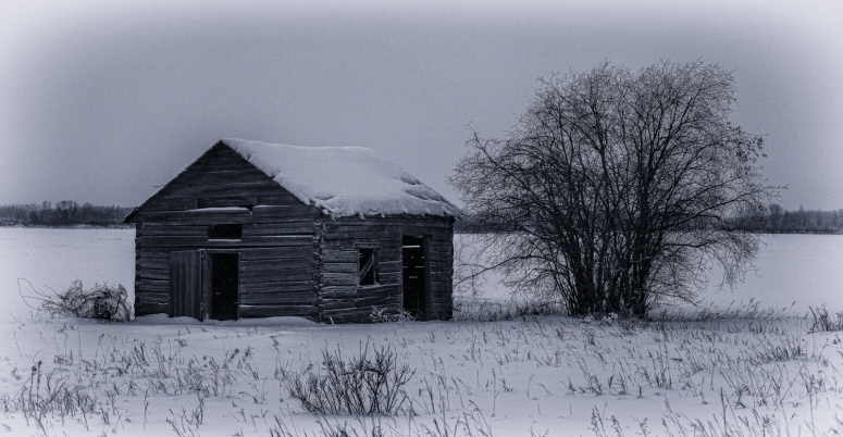 Shed - Buttertown, Ab - Canada 3
