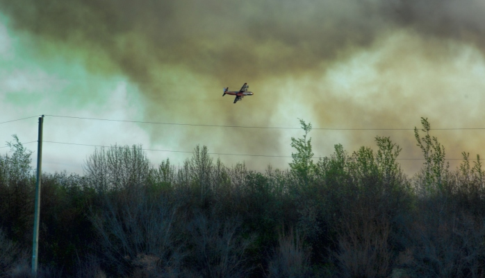 Wildfire - High Level, Ab - 4 May 2016 - 16