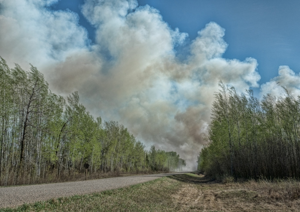 Wildfire - High Level, Ab - 4 May 2016 - 4