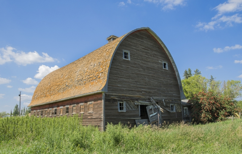 Barn - Hay Lakes, Alberta 1