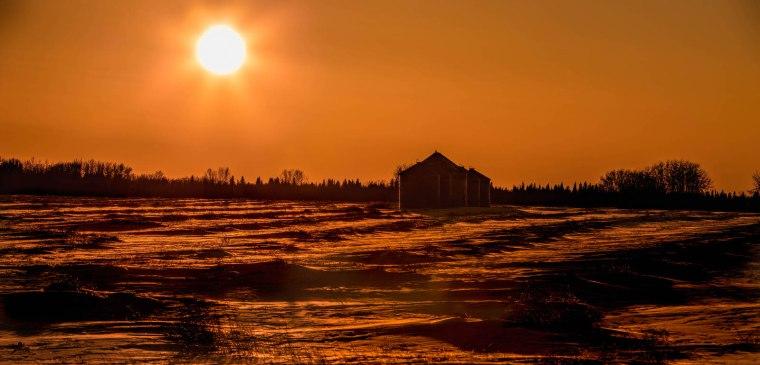 Cold February Sun - Near Webberville Hall, Alberta
