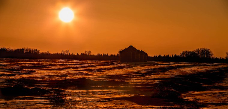 Cold February Sun - Near Webberville Hall, Alberta