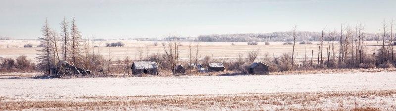Derelict Homestead – Sexsmith, Alberta, Canada – 1