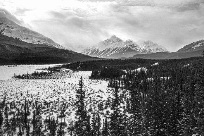 Banff National Park - 4