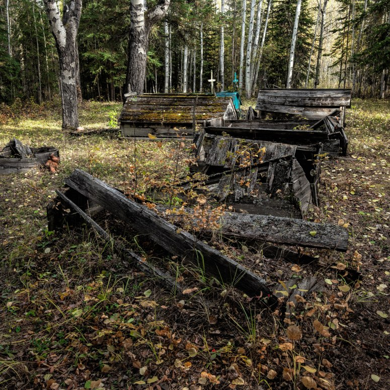 Indian Cabins, Alberta - 1