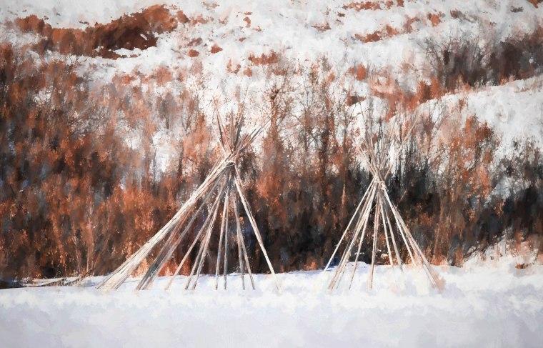 Tipi Poles - Dunvegan, Alberta, 2