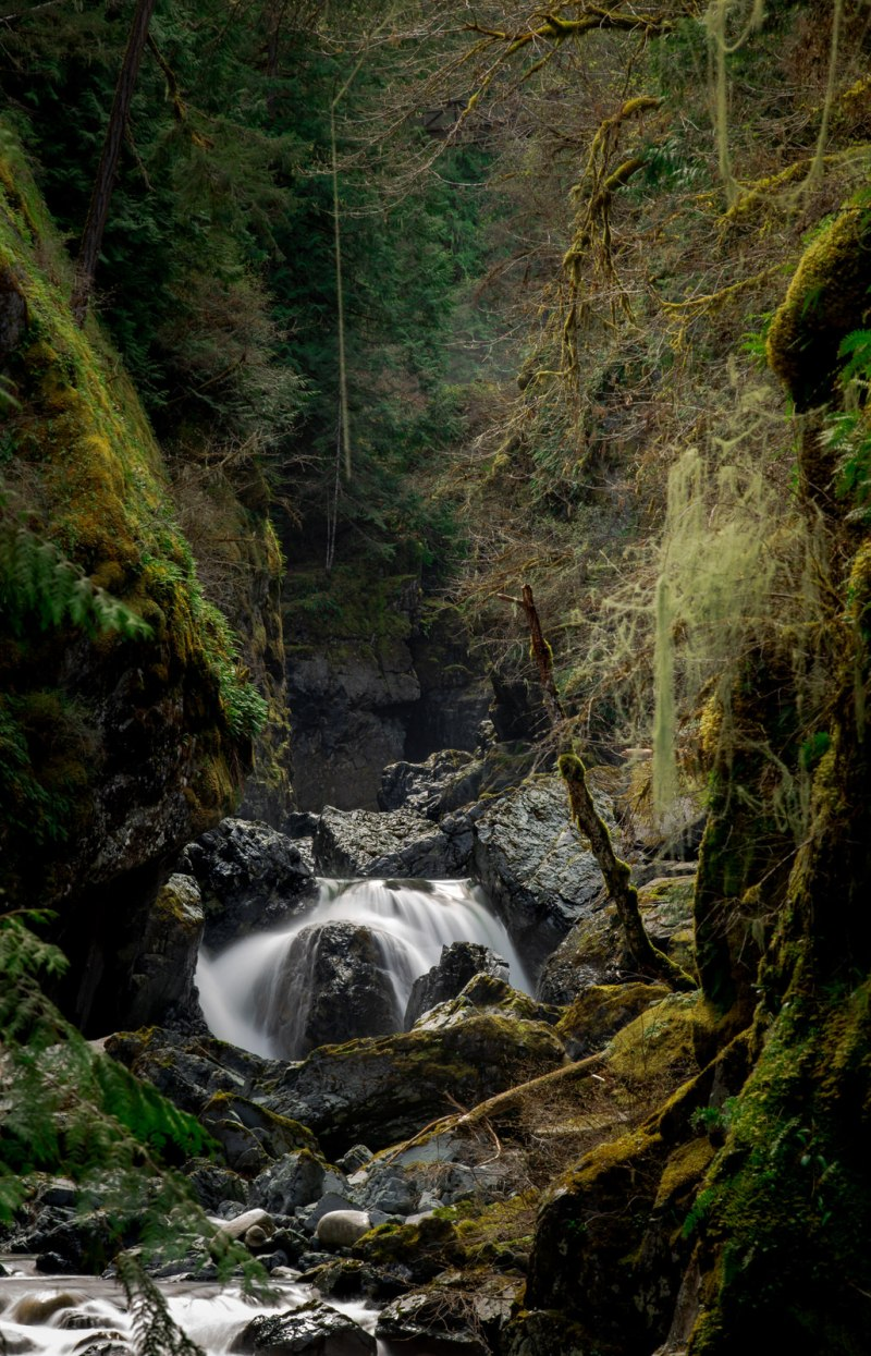 Englishman River Falls 4