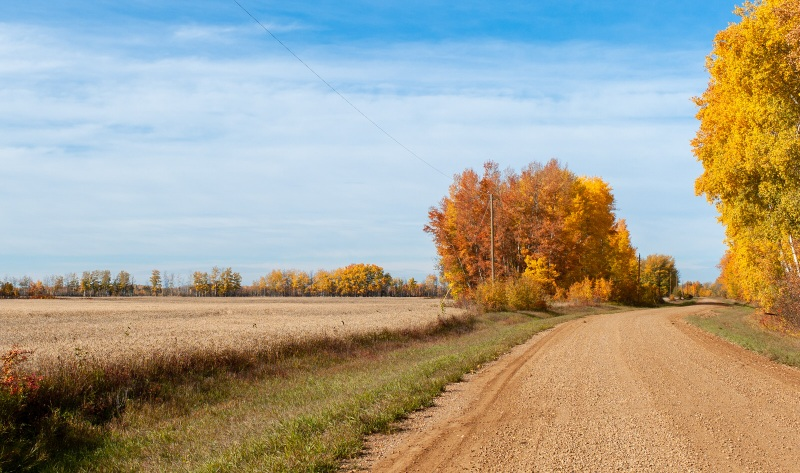 Autumn Colour - Buttery Refraction, Butter Town - Fort Vermilion, Alberta
